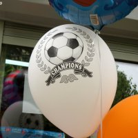 Воздушный шарик с рисунком на тему дня :: Нина Бутко