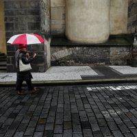 Укрывшись зонтом, уткнувшись в путеводитель :: Татьяна [Sumtime]