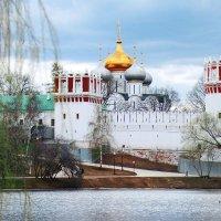 Новодевичий монастырь :: Виктория Бенедищук