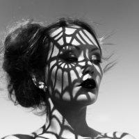 Игра света и тени :: Алексей Масалов