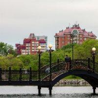 мост влюбленных в Хабаровске :: Ольга Щербакова