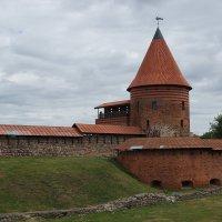 Каунасский замок. :: Евгений К