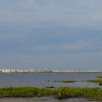 3км от города Северодвинск. Начинается Белое море. :: Михаил Поскотинов
