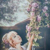 Цветущие ветви акации. :: Olga Zhukova