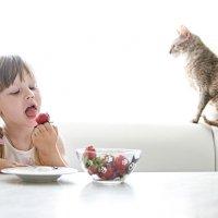 Ксения и кот :: Olga Makovetskaya