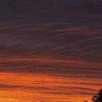 Летний закат в городе :: Сергей Форос