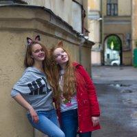 Фотопленер   Питерские кошечки :: Елена Маковоз