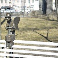Петербургский ангел :: Наталия П