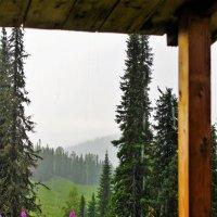 Сыплет летний дождик :: Сергей Чиняев