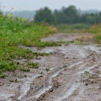 Во время дождя :: Шура Еремеева