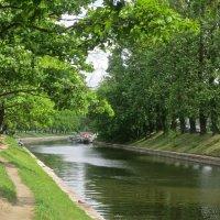 на набережной реки Карповки :: Елена