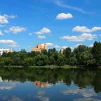 Люблинский пруд в Москве :: Сергей Михальченко