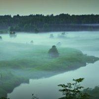 туман :: Сергей Розанов