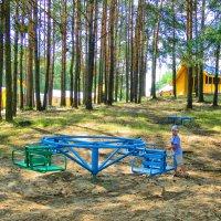 Дети на отдыхе :: валерий капельян