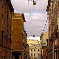 Городские улицы :: Семья Фоменковых