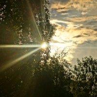 луч солнца золотого... :: Alexandr Staroverov