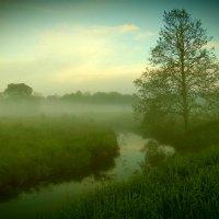 Там за туманами :: Андрей Осипов