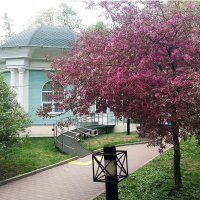 Лето в Екатерининском парке :: Владимир Прокофьев