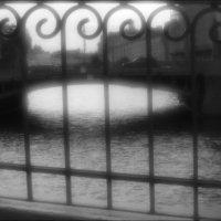 Бессонной белой ночью :: galina bronnikova