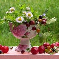 В моих глазах играет лето... :: Татьяна Смоляниченко