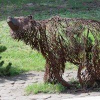 Медведь :: Алексей Семченко {SAM}