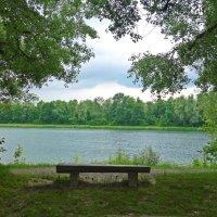 Одинокая скамейка... :: Galina Dzubina
