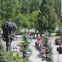 Митинг 22 июня. :: Наталья Золотых-Сибирская