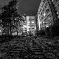 После апокалипсиса :: Роман Шершнев