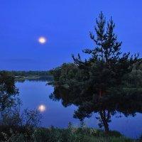 Луна  купается. :: Валера39 Василевский.
