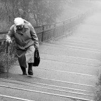 Путь длинною в жизнь :: Иван Кривко