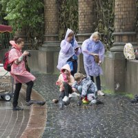 Даже дождь не помеха :: Виктор Орехов