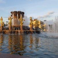 Москва :: Марина
