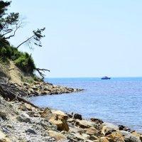 Море. :: Береславская Елена