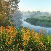Утро у туманной реки :: Николай Андреев