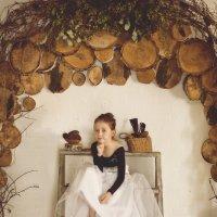 Лесная фея :: Anna Petry