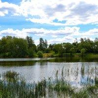 Деревенский пейзаж с озером :: Милешкин Владимир Алексеевич