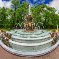 Фонтан в Летнем саду :: Александр Неустроев