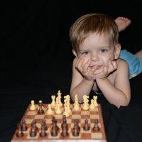 Шахматист :: Юлия Шевчук