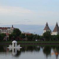 Лебединое Озеро(Астрахань) :: Иной Иной