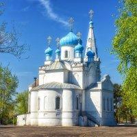 Храм Святого Александра Невского на Оби :: Ольга Волкова