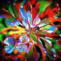 Цветок из снов :: Фотогруппа Весна.