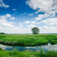 Малые реки России! :: Борис Кононов