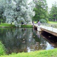 Гатчина. Дворцовый парк. :: alemigun