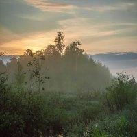 Белою ночью, ночью туманной... :: Дмитрий Костоусов