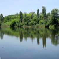 Озеро в ростовском зоопарке... :: Нина Бутко