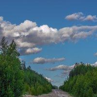 Заброшенная дорога :: Владимир Бобришев