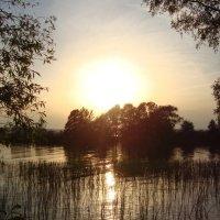 Вечер у реки... :: Надежда Савельева