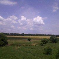 2 :: Миша Любчик