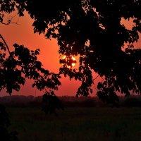 Вечерний пейзаж с закатом.. :: Юрий Анипов