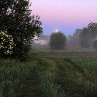 Ночь пройдет, настанет утро ясное....Солнце взойдет! :: Павлова Татьяна Павлова